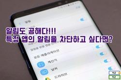 갤럭시 노트8 앱 알림 차단, 앱 단위로 끄는 방법 -갤노트8 사용법