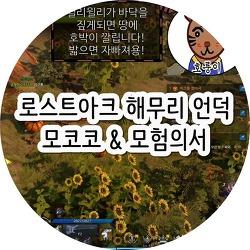 로스트아크 해무리언덕 모코코 & 모험의서 + 윌리윌리 시간 & 위치