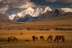 Traveling Photographer Captures the Beautiful Unspoiled Landscape of Kyrgyzstan 키르기스스탄의 천혜의 경관