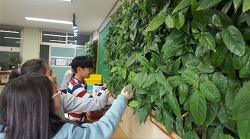 빌레나무 미세먼지 20% 줄여 실내 공기질 보급사업 실시