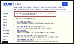 줌(ZUM)에 블로그 검색 등록하여 유입자 늘려보자+