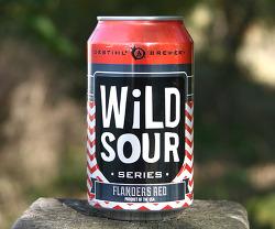 Destihl Wild Sour Flanders Red (데스틸 와일드 사워 플랜더스 레드) - 6.1%