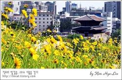 [적묘의 서울]한양도성, 흥인지문, 한글날, 세종대왕 업적도 많으시지~