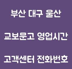 부산 대구 창원 울산 교보문고 영업시간 휴무일 및 고객센터 전화번호