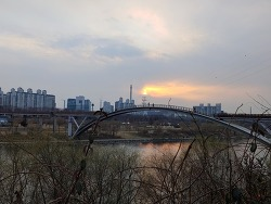 봄소식이 들려오는 선유도공원과 선유도카페 카페나루