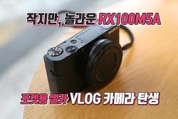 가벼운 셀카 가능한 디지털카메라카메라, 소니 RX100M5A
