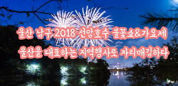 울산 남구 2018 선암호수 불꽃쇼&가요제 울산을 대표하는 지역행사로 자리매김하다