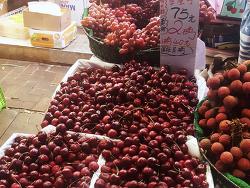 홍콩의 먹거리: 각종 열대 과일