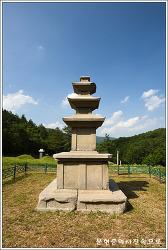 경북 경주 남사리 삼층석탑  보물 제907호