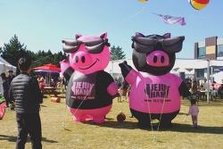 제주 흑돼지 먹거리 축제! 제1회 '피그인블랙 페스티벌' 현장을 다녀오다!