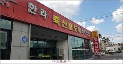 [흑돼지] 제주 '한라 축산물도매센터'