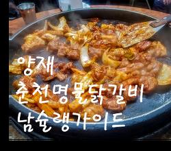 [양재, 닭갈비] 춘천명물닭갈비 남슐랭가이드