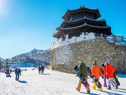 방심할 수 없는 삼한사미의 계절! 한파가 바꾼 대한민국의 겨울 트렌드