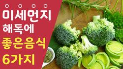 미세먼지 해독에 좋은 음식 6가지
