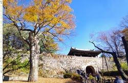 남한산성 둘레길의 가을 上