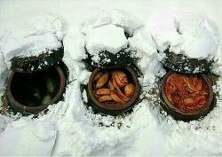 겨울나기 김장독
