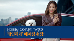 현대해상다이렉트 자동차보험 TV광고 '태연하게' 메이킹 현장!