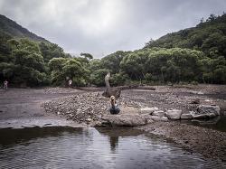 물빠진 주산지, 물찬 주산지를 상상하다. by 포토테라피스트 백승휴