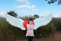 [시은공주] 천사의 날개