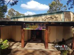 호주 여행 5일차(1) : 렙타일파크(Reptile Park)