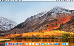 MacOS High Sierra beta 설치
