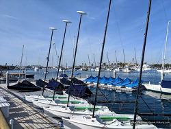 캘리포니아 바다 여행, 캘리포니아 Newport Beach(뉴포트비치)