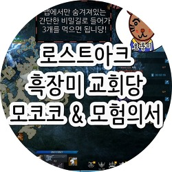 로스트아크 흑장미 교회당 모코코 & 모험의서 찾기!