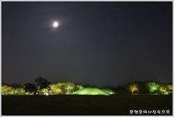 경북 경주 오릉 사적 제172호