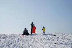 제주도 겨울 가볼만한 곳 어승생 삼거리에서 눈썰매타기