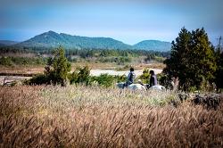 농어촌체험 - 조랑말 박물관이 있는 바람의 마을 가시리