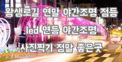 울산 남구 왕생이길 연말 야간조명 사랑의 불빛 LED 연등 운영 그냥 걷고싶은 길