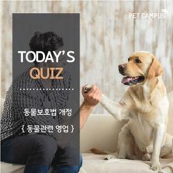 [펫캠퍼스] 2018년 동물보호법에 신설된 동물관련 영업 형태는?