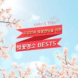 노래만으로 부족해!오감만족 벚꽃엔딩을 위한 벚꽃명소 BEST5