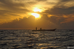 EBS <성난 물고기> 인도네시아 술라웨시섬 2부작 방영 일정