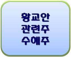 [주식 테마주] [황교안] 황교안 관련주 / 대선 테마주 / 황교안 수혜주 확인하기