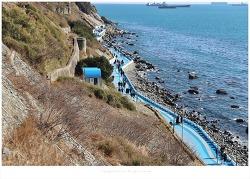 부산 영도 절영해안 산책로와 흰여울 해안터널 중리해변 풍경