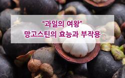 과일의 여왕이라 불리는 망고스틴의 효능과 부작용