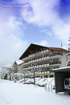 2013 사진공모전 겨울