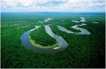 물과 같은 삶 (Seven Characteristics of Water)