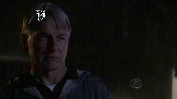Good Bye, Mike  (NCIS 8x23, Swan Song)