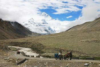 샹그릴라로 가는 길, 티벳 여행기 6(完)