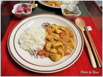 [요리 레시피] 인도 커리 - 인델리 인도풍 정통 커리 알루고비 커리