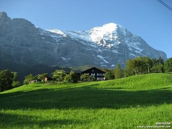 스위스 융프라우 가는길 (Jungfrau)