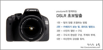 [DSLR강좌] DSLR 초보탈출 2편 - 카메라가 보는 빛. 화이트 밸런스