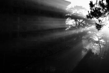 In Light - 14 역광 in back light