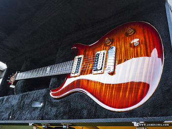 PRS Custom22 Limited Edition[10 Top, Bird 인레이]