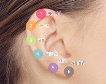귀 지압법으로 통증을 완화하는 방법