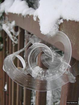 빙화(氷花; Frost flower) :자연이 만들어낸 정교한 아름다움