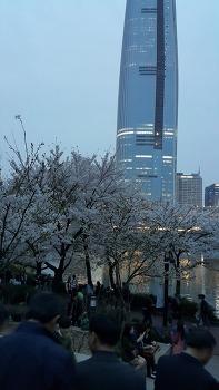 석촌호수에 봄꽃 축제에 다녀왔어요.