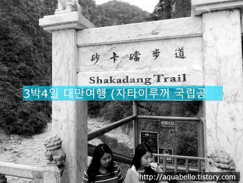 [해외여행/대만] 3박4일 대가족 패키지 대만여행 10편 (자타이루꺼 국립공원)